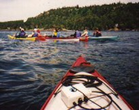 people in kayaks on the water